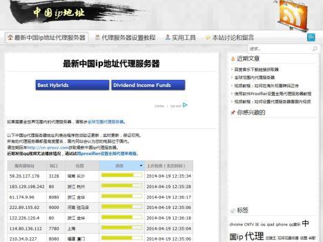 中國最大免費VPN